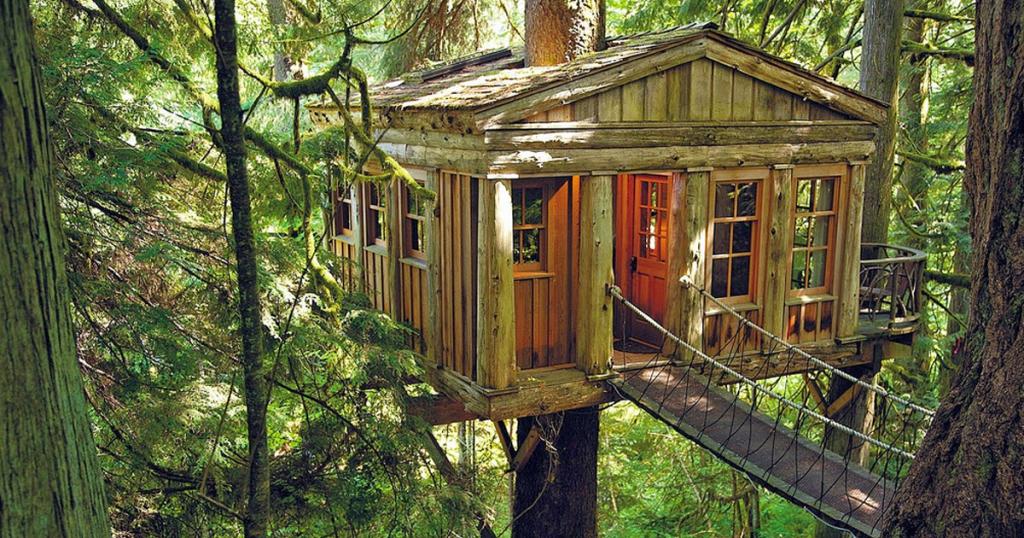 glamping, casa arbol. ecoturismo. turismo naturaleza
