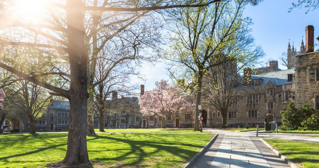 pricenton university