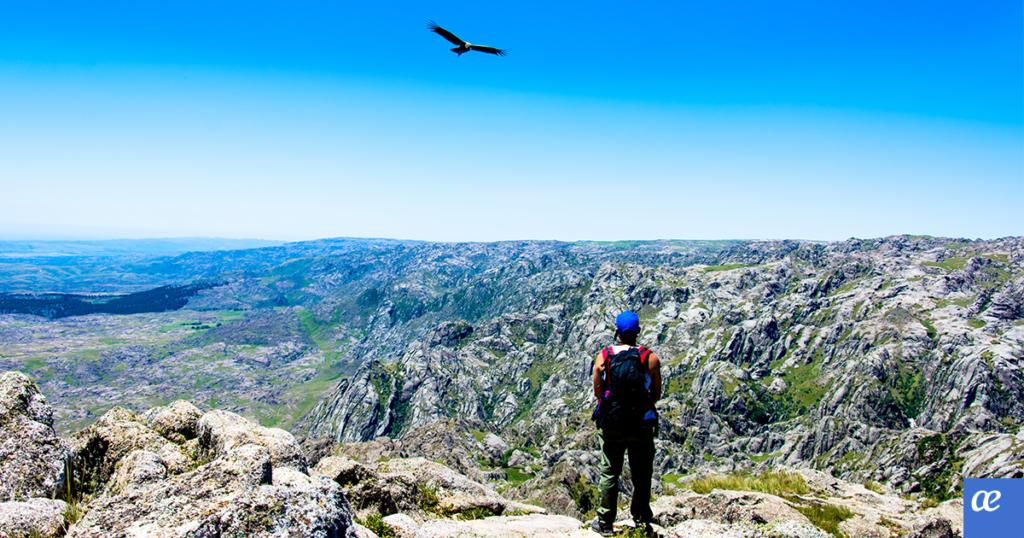 cordoba, turismo activo, argentina, golf, ecoturismo, observación de aves