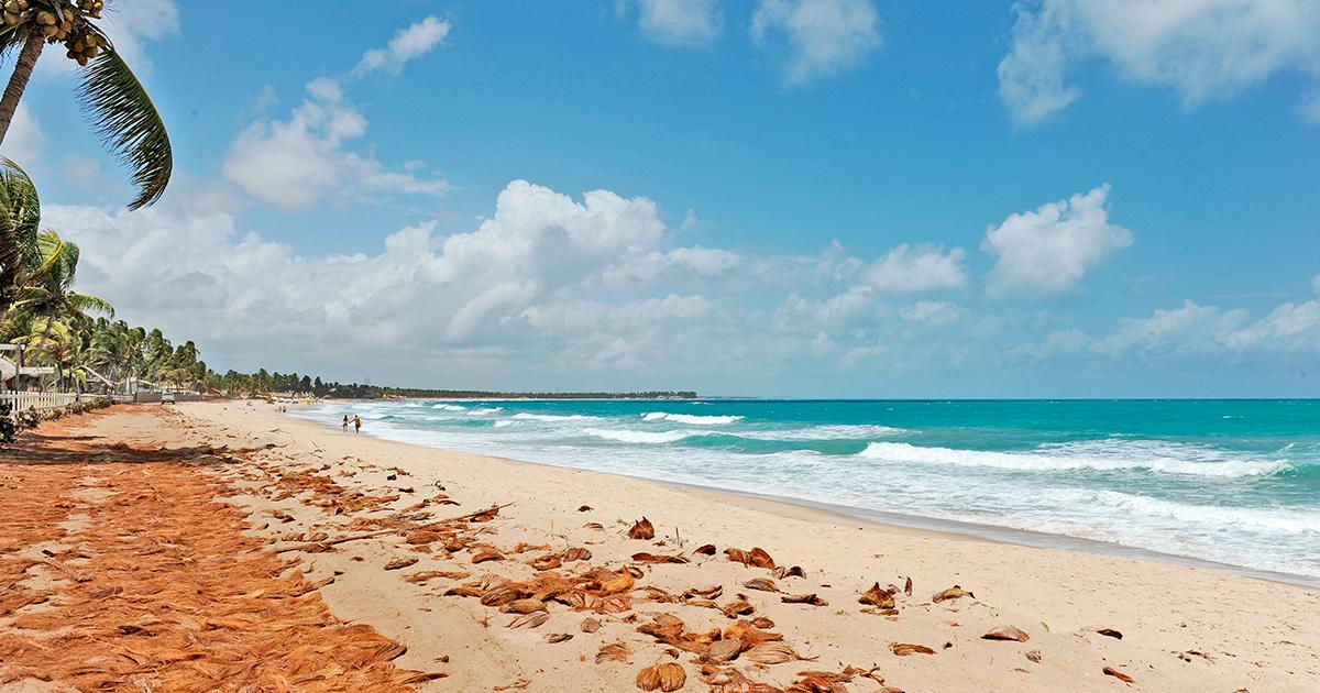 playas en pernambuco, recife, brasil, playa maracaipe, air europa