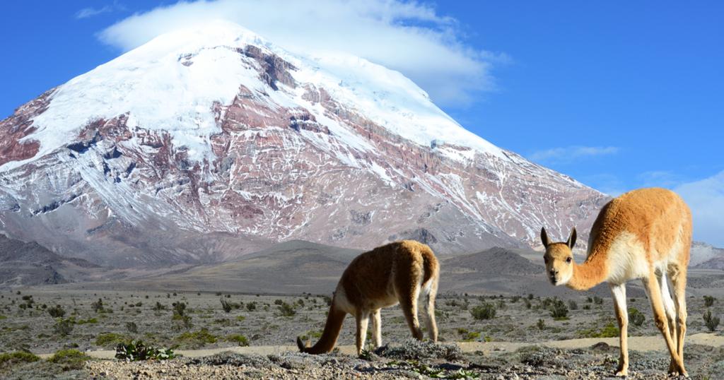 Chimborazo, volcan, Ecuador,