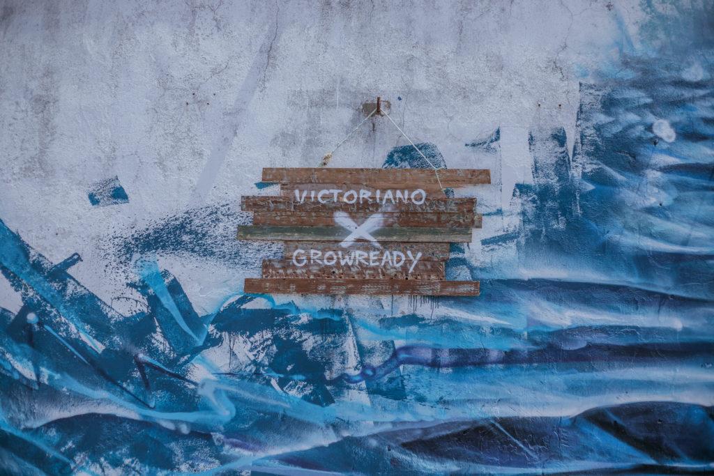 air europa, piel de atún, océanos, sostenibilidad