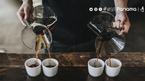 Café, servir café, Panamá, Boquete